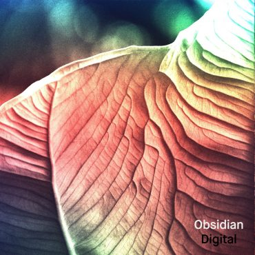 Obsidian logo 16a_226156715