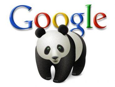 Hvad er Google panda
