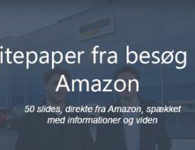 Whitepaper grafik besøg hos Amazon